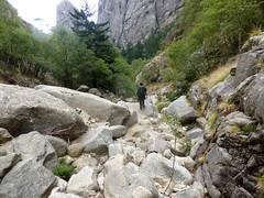 Descente de la Purcaraccia : dans le lit du ruisseau après la 1ère confluence