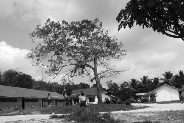 suatu hari di sekolah SD - desa tumbang empas