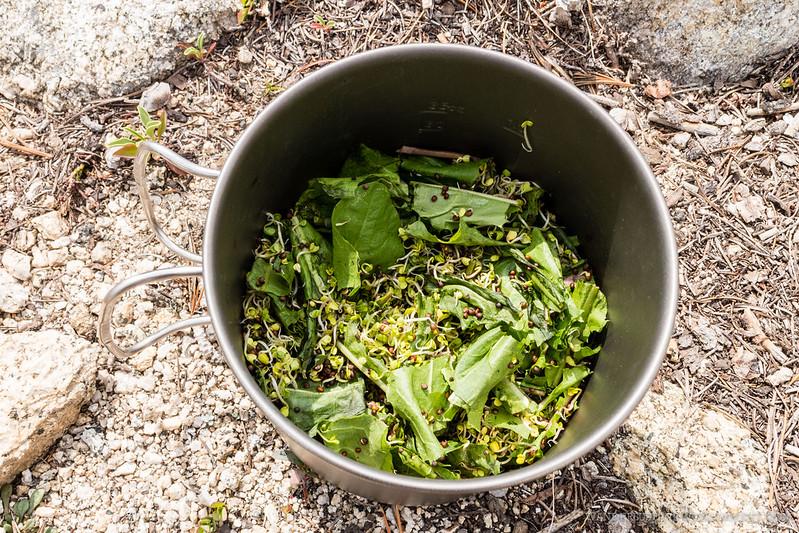 Trail salad