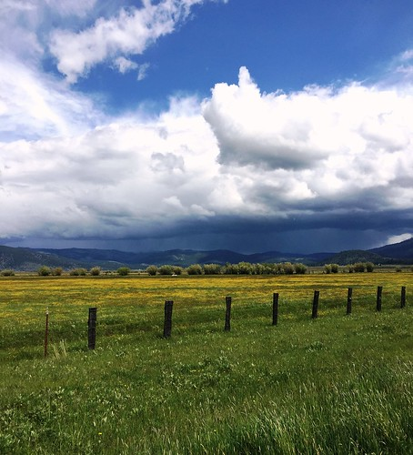 california ranch storm hail farm sierras highcountry highway89 sierravalley