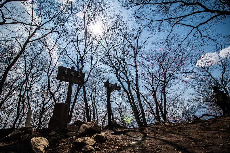 20150425-鳴虫山-0288.jpg