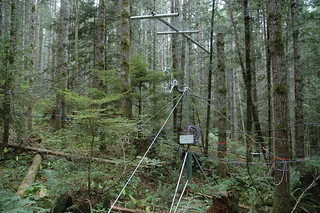One of the tripods along the transect with wind and CO2 measurements