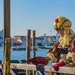 Venezia , il carnevale ... single