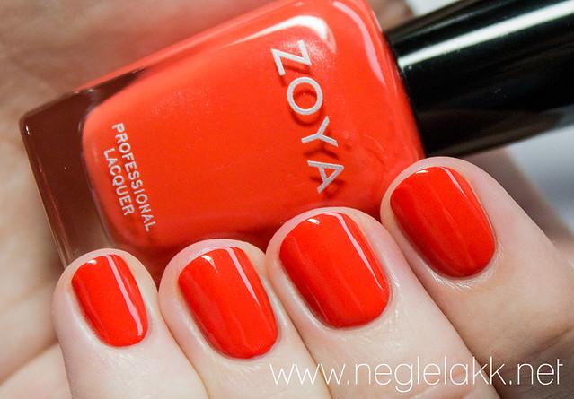 zoya-015