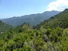 Dans la remontée vers le plateau du Niffru avec la vue sur le monolithe caractéristiquet