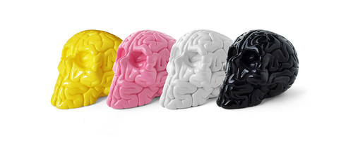 MINI SKULL BRAIN SET