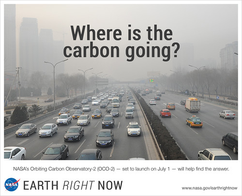 Where is the Carbon Going?