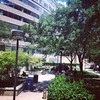 Lunch al fresco in the FCC courtyard on a sunny, low-humidity day in DC: unexpectedly awesome
