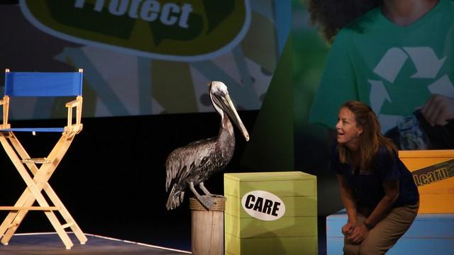 SeaWorld Orlando Summer 2014
