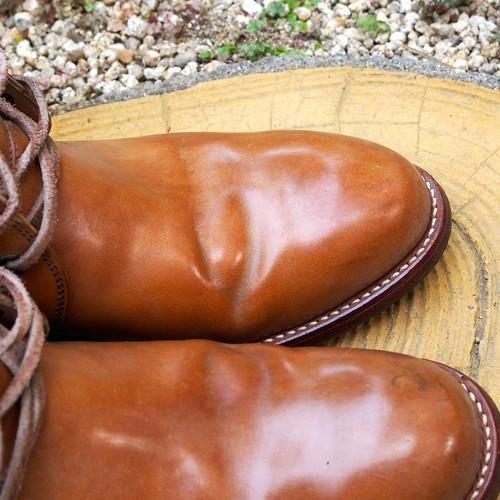 ある営業マンの靴 shausser C712 コードバン