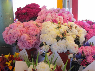 Peonies at Pike Place Market