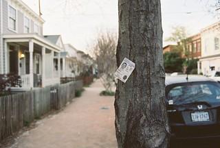 Albemarle Street Lost & Found