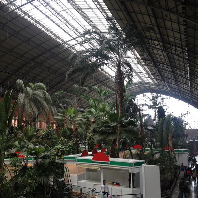 马德里阿托查火车站