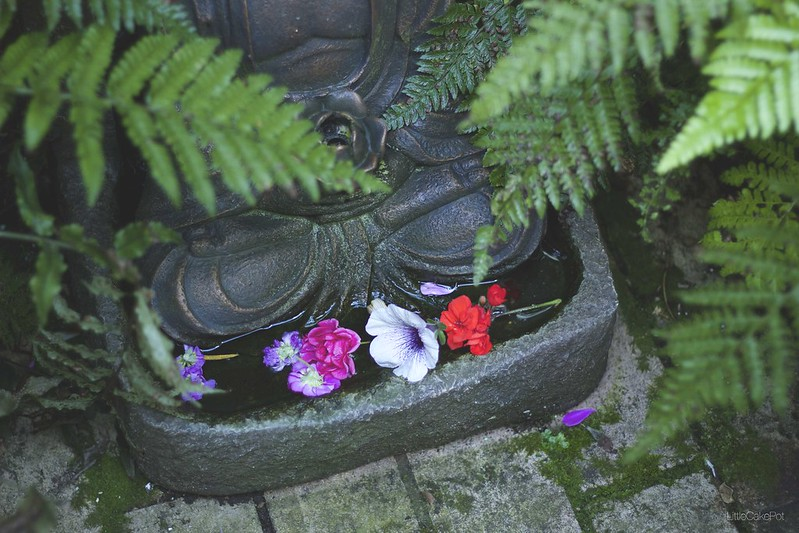 offerings patio