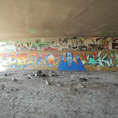 Spiders, bats, flies, and wind make this spot a challenge. The end wall of a long line. #graffiti old pic #cbs #spv #sfk #dct
