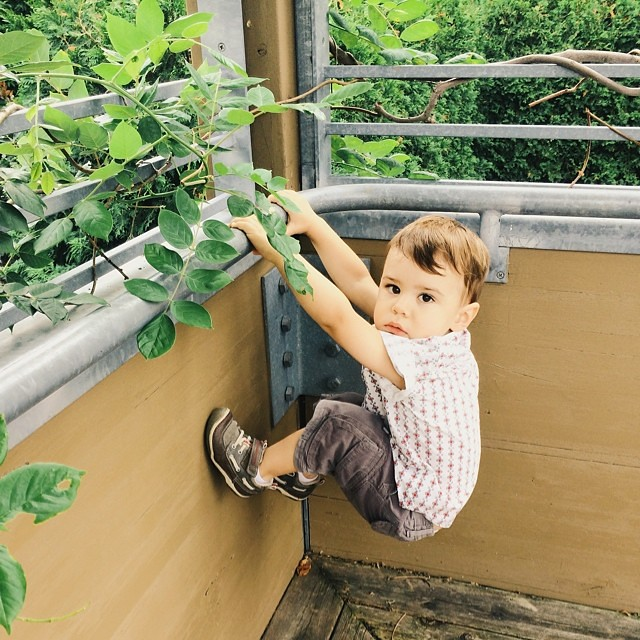 Climbin. #instaluther #toddler #children