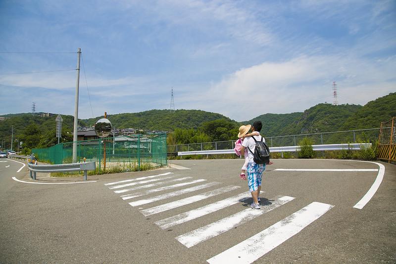 武庫川渓谷廃線ハイキング(生瀬ー武田尾)501