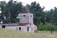 33 Massugas - Béraud - Photo of Pellegrue