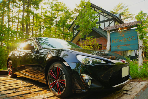 Toyota 86 in Forest