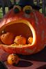 Treinen Farm Carnivorous Pumpkin