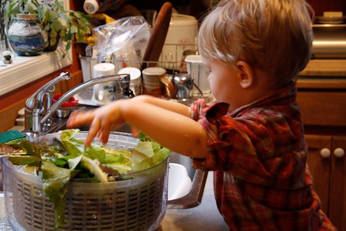 Washing salad greens for the family's dinner (Photo from The Montessori Child at Home)