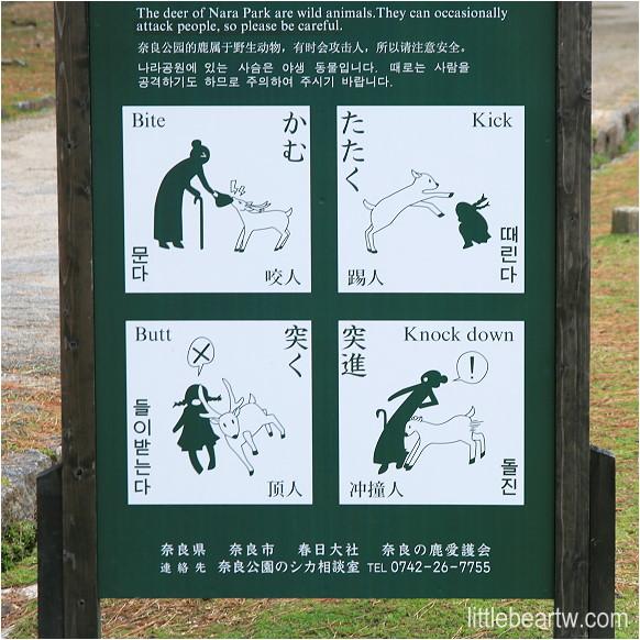 奈良公園-06
