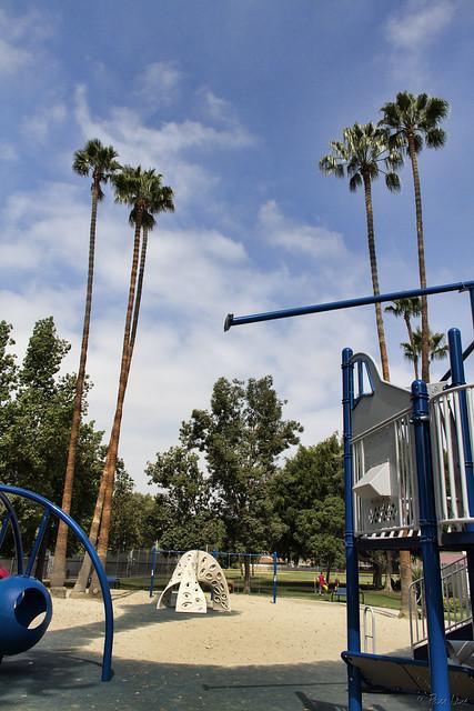 Palms at Furman Park
