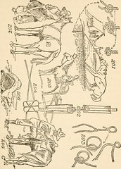 "Image from page 158 of ""The American boys' handybook of camp-lore and woodcraft"" (1920)"