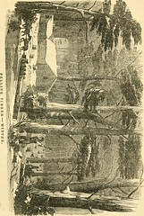"""Image from page 430 of """"The pictorial sketch-book of Pennsylvania, or, Its scenery, internal improvements, resources, and agriculture, populary described"""" (1852)"""