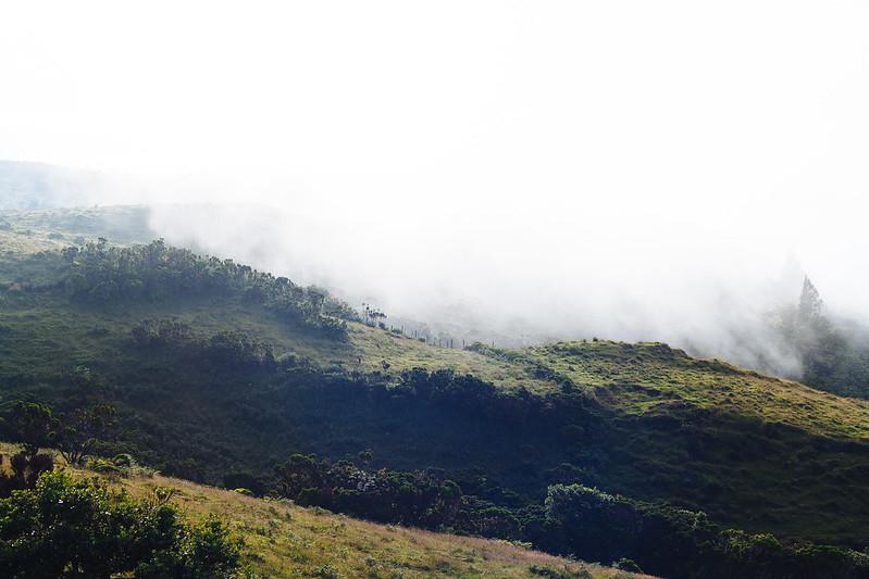 montanha do pico, açores