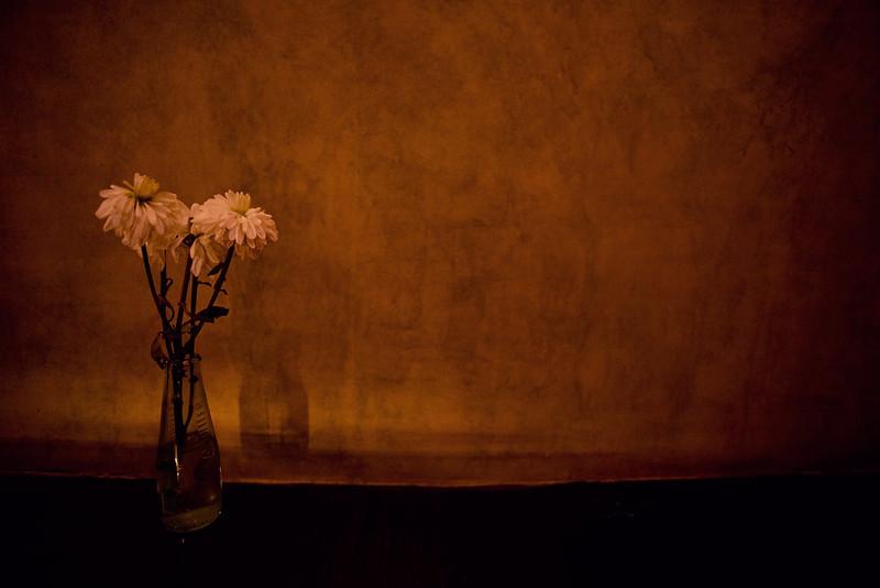 57/365 - still life