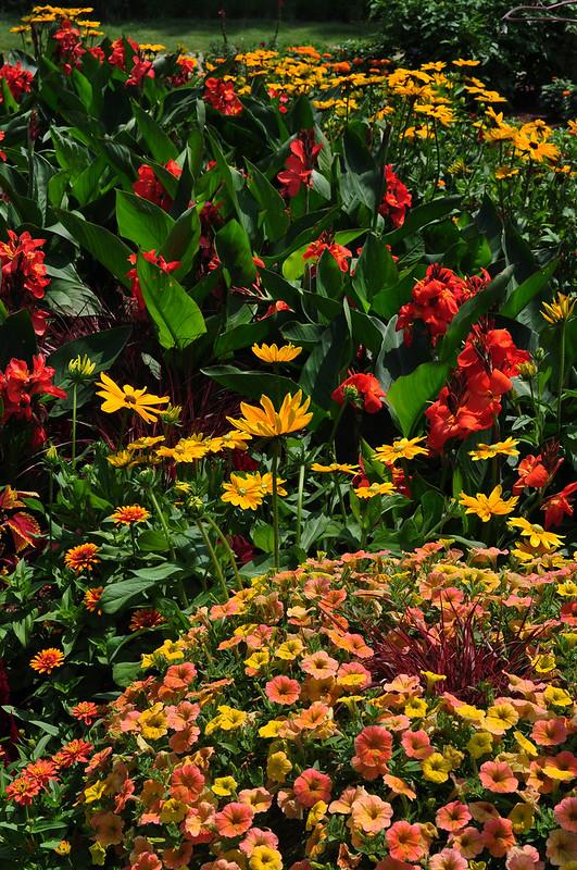 AAS Display Garden (1)