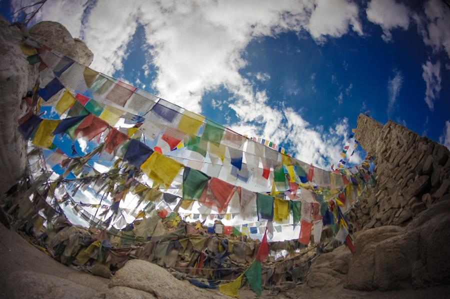 Дорожка ко дворцу Шей увешена множеством лунгта. Монастыри Ладакха (Монастыри малого Тибета) © Kartzon Dream - авторские путешествия, авторские туры в Ладакх, тревел фото, тревел видео, фототуры