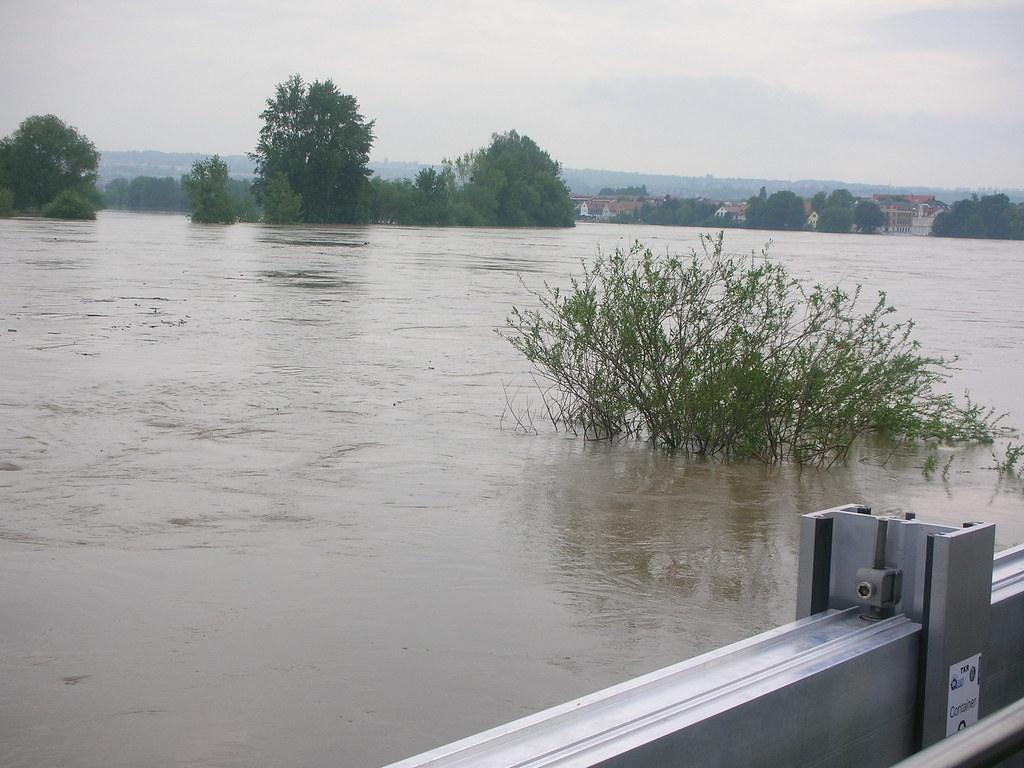 Elbeflut 2013, Dresden