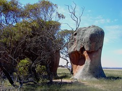 Eyre Peninsula. Murphys haystacks. Granite inselbergs. Near Streakey Bay.