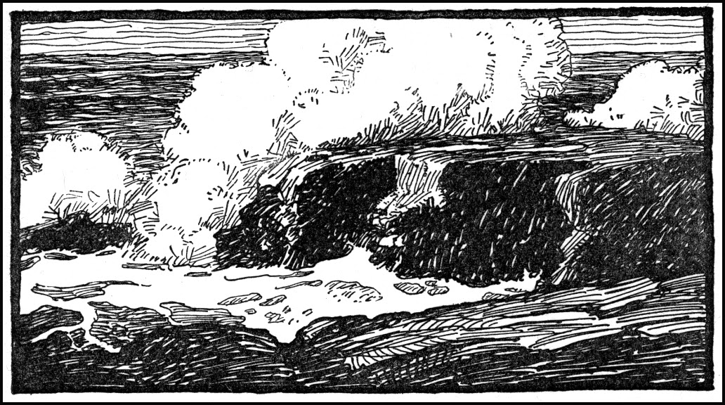 WyethNC17