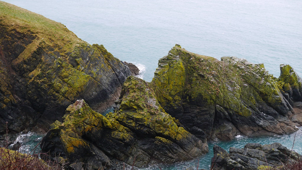 Cliffs up from Cadgwith