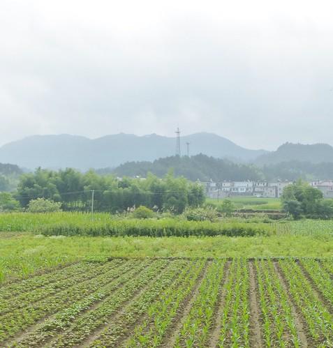 Jiangxi-Tunxi-Wuyuan-bus (13)