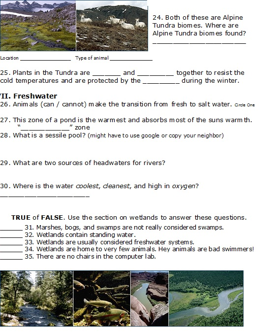 Biomes page 4