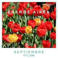 Tulipanes del Sur del Mundo! #FelizPrimavera2014 #primavera #spring #flower #tulipan #igersphilia #photooftheday #IG_AMERICAS #igersbsas #igersbuenosaires #igersargentina #instagramers #instagramersgallery #igersgallerymadrid #unykaphoto #tulip Via Instaw