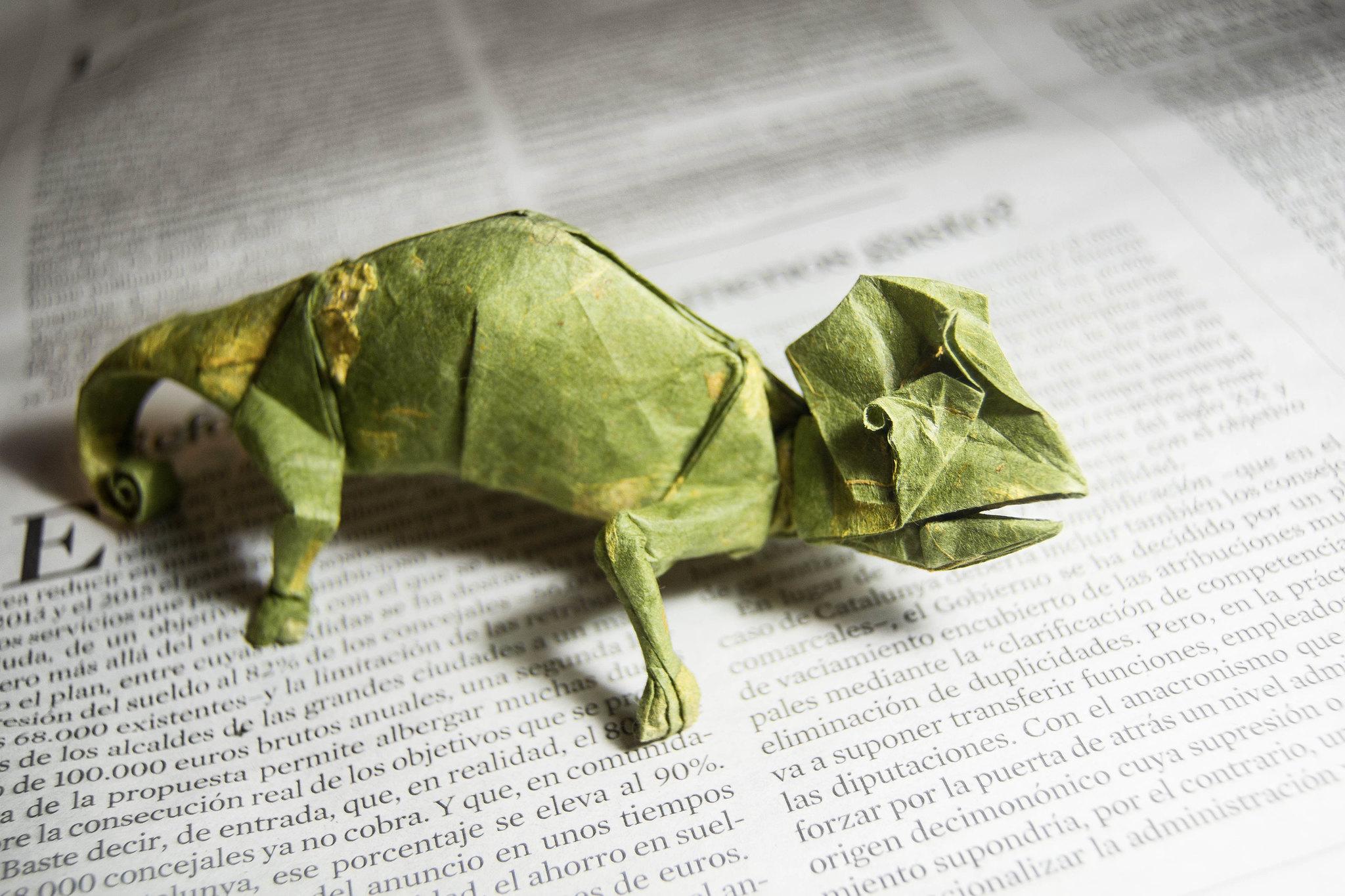 Origami Chameleon - Artur Biernacki