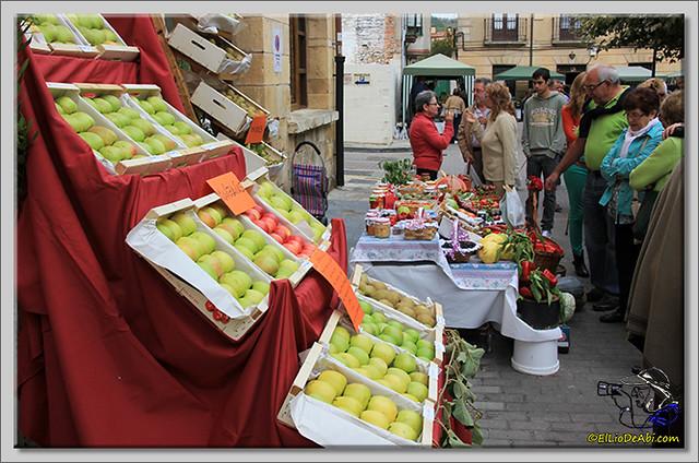 Encantapájaros y Feria de Oña 2014 (7)