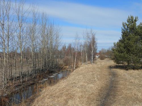 Niittynäkymä, Pohjois-Tapiola Espoo 29.3.2014