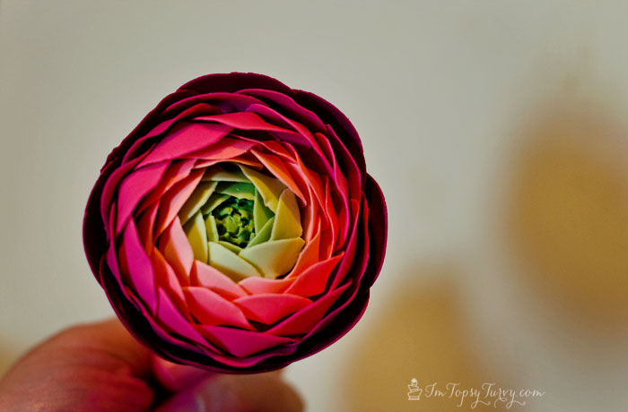multicolored-gumpaste-ranunculus