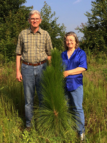 The Allens proudly stand next to one of their tall Longleaf pine seedlings on their Hawkinsville, Georgia farm. Courtesy: Michelle Stone