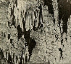 "Image from page 44 of ""Soil physics and management"" (1917)"