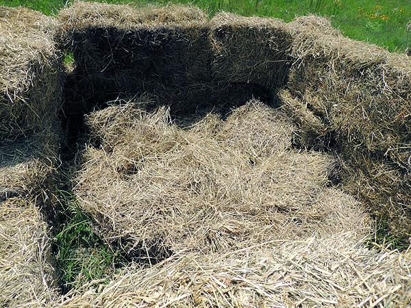 Hay-bales-compost piles-10