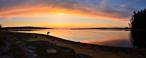 sunset washington photographer blaine draytonharbor nikond7000 nikkor18to200mmvrlens