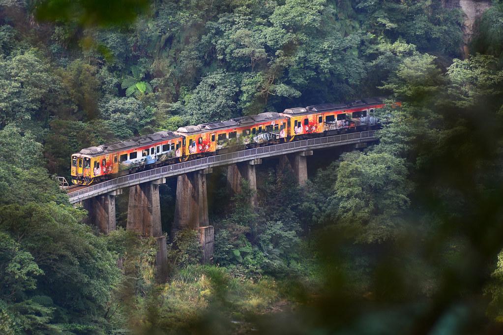 穿過樹林遠眺幼坑鐵橋,全台碩果僅存的現役古老鐵道橋樑,彌足珍貴(古庭維攝、果力文化提供)