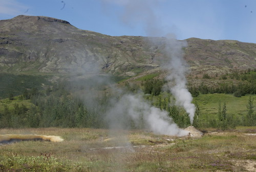 Steam Coming from the Field